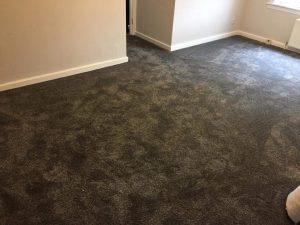 Carpet/Vinyl Fitter. Bedroom Carpet.